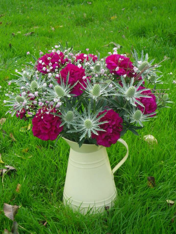 Thistles, carnations and gyp in an enamel jug. Flowers by Davina