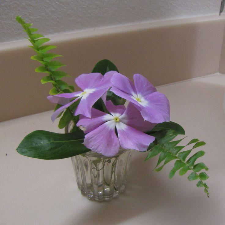 Make Tiny Flower Arrangements - News - Bubblews