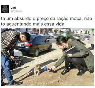 Imagem e Frases Facebook: As mais Engraçadas Aqui.: Três animais