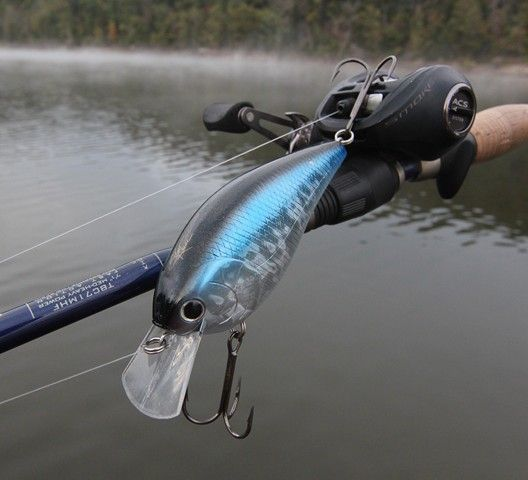 This is big. Really BIG. Find out what it is in today's feature article. Photo copyright Brad Wiegmann Outdoors.  http://www.bradwiegmann.com/lures/hot-lures/1109-lucky-craft-skt-magnum-mr-crankbait.html