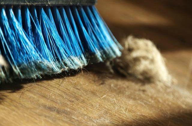 Cuando hacemos limpieza en nuestro hogar existen un gran número de rincones y lugares donde no solemos limpiar. Con ello, ya sea pordescuido o por su difícil acceso, provocamos que una gran cantid...