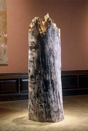 Strom a muž v čase
