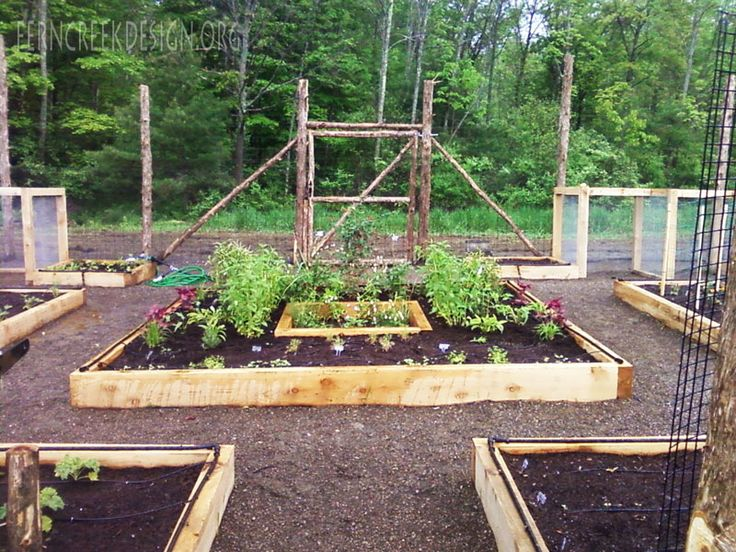 Organic Garden Design Amazing Inspiration Design