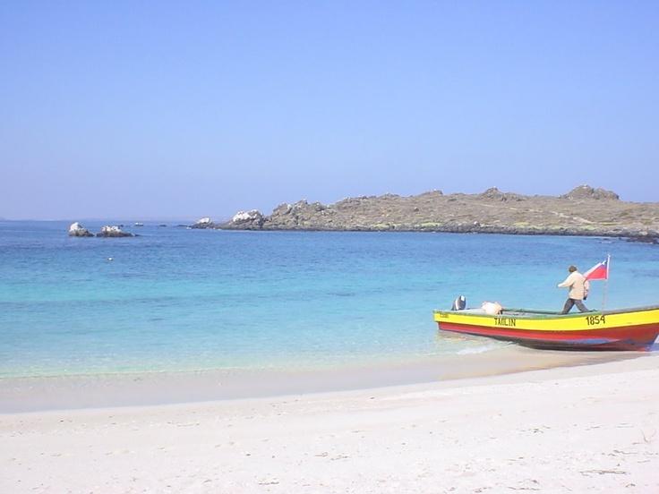 Isla Damas - Chile