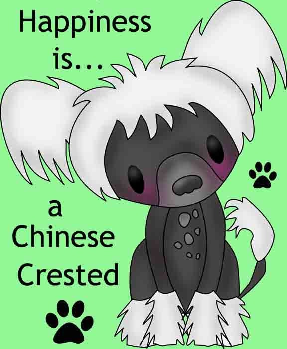CHINESE CRESTED Magnet Set by crestiecuties on Etsy