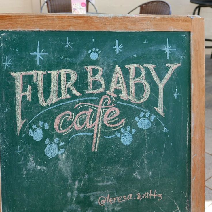 Throwback to that time I took over the kids corner to do some unsolicited chalkboard work for @furbabycafe