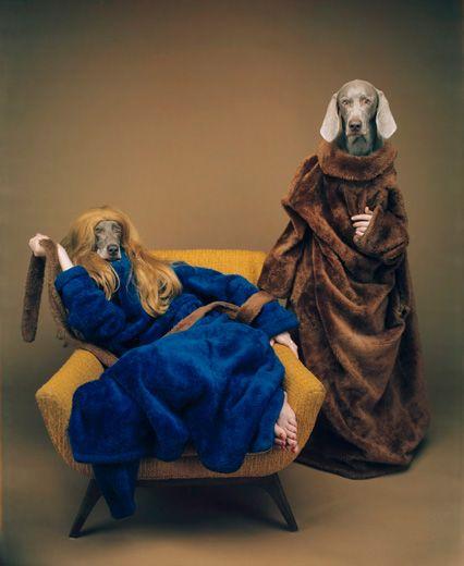 William Wegman - the Weimaraner photographer - Panopticon Gallery.  Love his stuff!