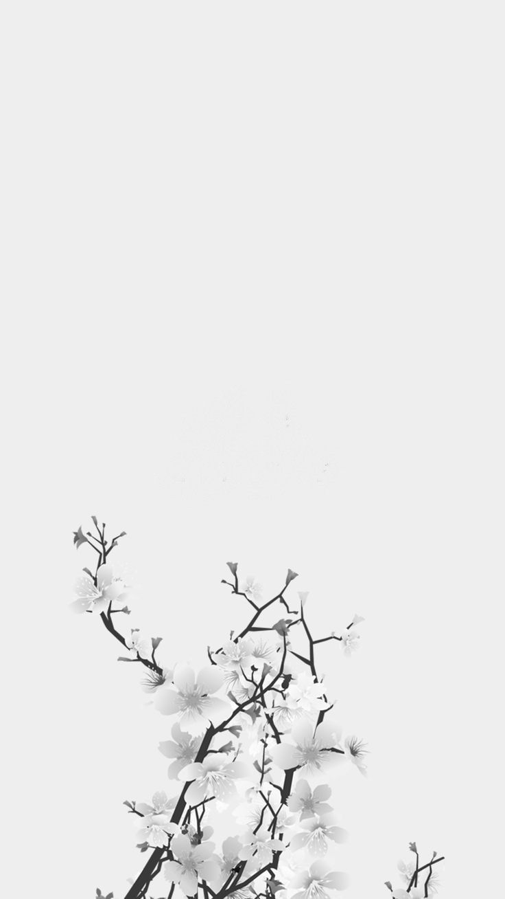White Background White Flowers Removed Text Life White Iphone Background White Background Wallpaper Iphone Wallpaper Glitter