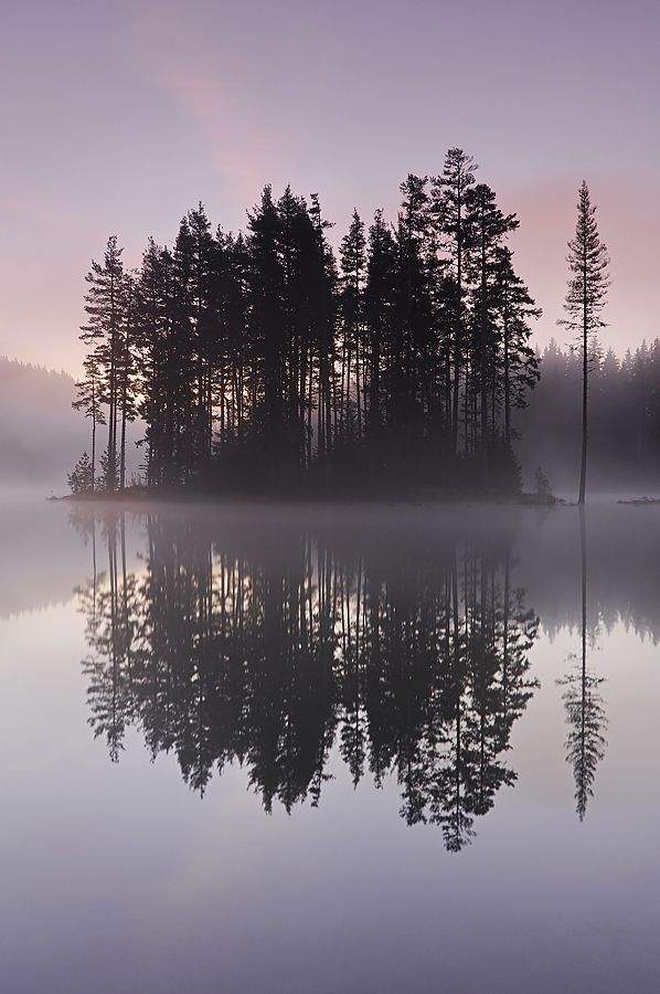 woodendreams: (by Simeon Simeonov)