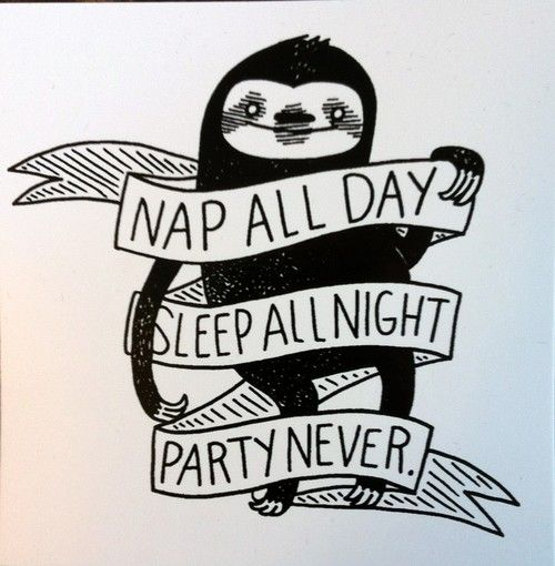 @Michelle Johnas  Ha! This sloth has the best priorities.