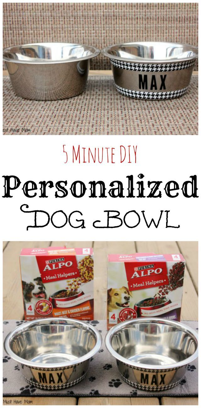 5 Minute DIY Personalized Dog Bowl. Such an easy ...