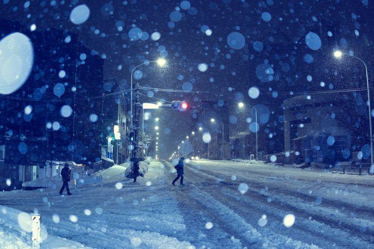 https://flic.kr/p/Rnbaj5 | Snow in Tokyo