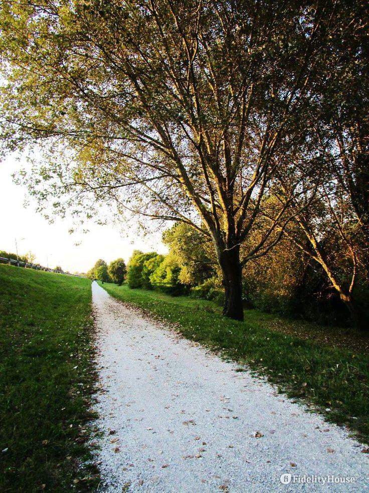 L'autunno mostra i suoi colori lungo questa stradina che costeggia il fiume Brenta nel tratto più vicino alla città di Padova.