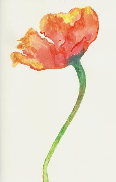 Fire Poppy Art Print
