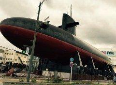 広島県呉市にある海上自衛隊呉史料館通称てつのくじら館  あきしおという名前の実物の潜水艦の展示は迫力満点でした  他にも海上自衛隊の歴史や潜水艦の模型なども展示しているそうで時間のあるときに見学したいです  その向かいにある大和ミュージアムも気になります(-)   海上自衛隊呉史料館 737-0029 広島県呉市宝町5番32号 TEL 0823-21-6111 開館時間9:0017:00 休館日火曜日 tags[広島県]