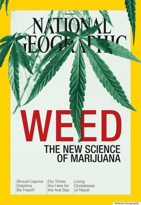 "National Geographics New Cover Will Make You See Weed In A Whole New Way National Geographic's upcoming June cover features one word bold enough to grab just about anyone's attention: ""WEED."""