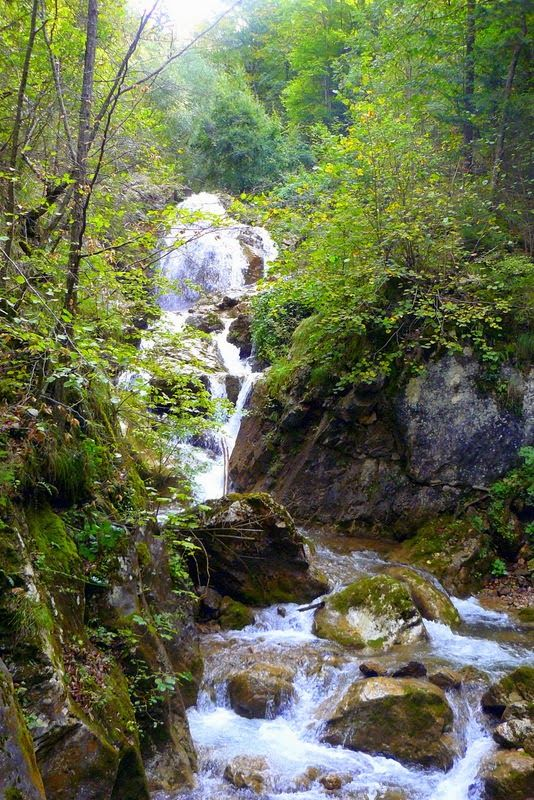 The Girl from Fairyland #nature #landscape  #photography #forest #woods #waterfall #tress