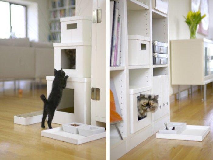 Toren voor de kat