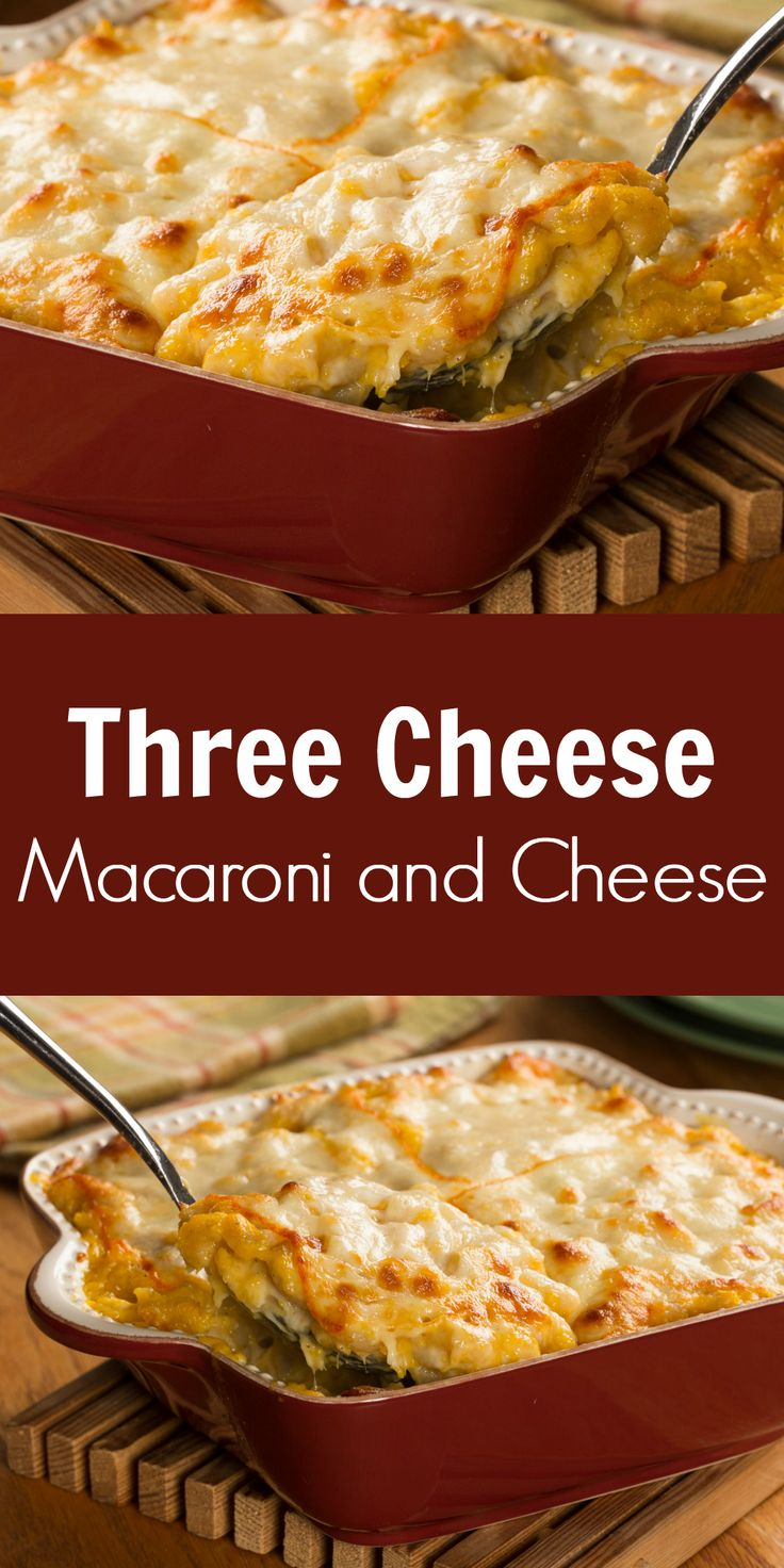 496 best everyday diabetic recipes images on pinterest diabetes our three cheese macaroni and cheese makes the perfect christmas side dish recipe forumfinder Images