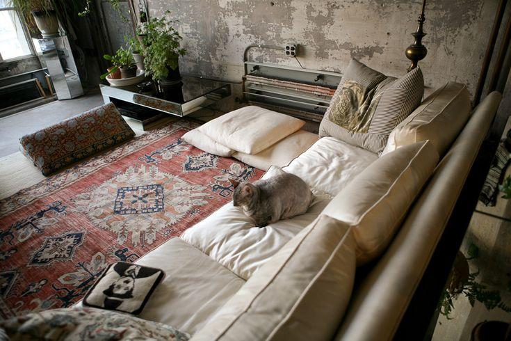cats & carpetsCat, Living Spaces, Charli Chaplin, Livingroom, Interiors, Bohemian Room, Living Room, Comfy Couch, Rugs