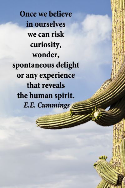 """""""We do not believe in ourselves until someone reveals that deep inside us something is valuable, worth listening to, worthy of our trust, sacred to our touch. Once we believe in ourselves we can risk curiosity, wonder, spontaneous delight or any experience that reveals the human spirit.""""  -- ee  cummings --  On saguaro image taken in Saguaro National Park, Tucson, Arizona -- Explore quotes of wisdom at…"""