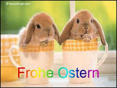 Home meets Hammrich: Frohe Ostern
