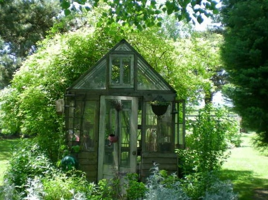 Greenhouses  Cold Frames / Re-purposing Old Windows  Doors - Ooooby