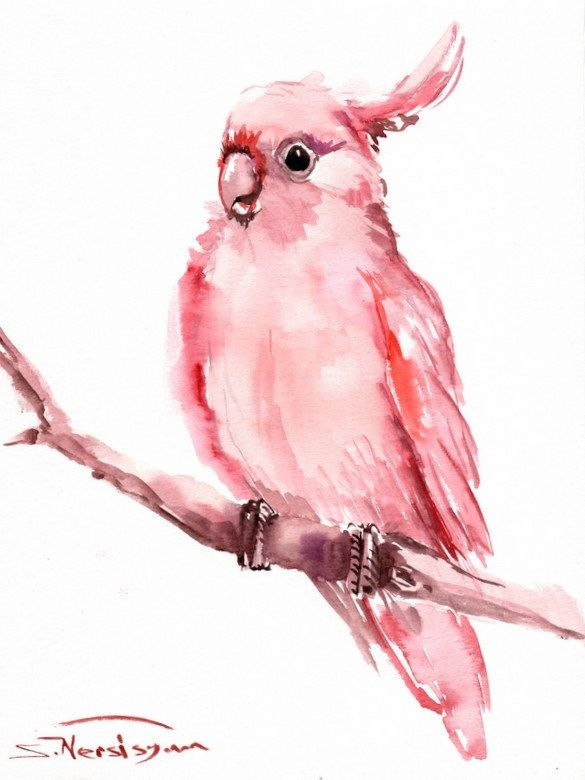 Pink Cockatoo Original watercolor painting 12 X 9 by ORIGINALONLY, $27.00