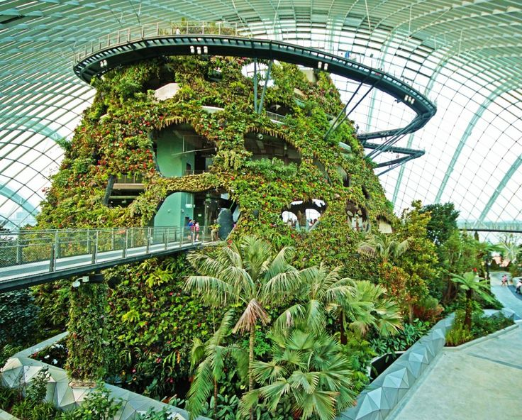 Cloud Forest, Gardens by the Bay, Singapore - http://mostbeautifulgardens.com/cloud-forest-gardens-by-the-bay-singapore/