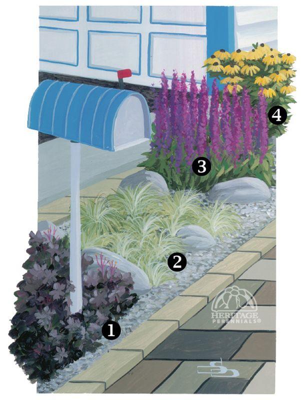 Garden Design Zone 3 112 best zone 3 plants & flowers images on pinterest | photos of