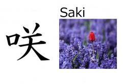 Saki (florecer) Significado: florecer (del verbo 'saku' = florecer, converitse en flor) Significado abstracto: Bella como una flor, que se convertirá en flor Lectura: saki Nombre de chica 咲 en nombres compuestos: Misaki, Masaki, Sakiko