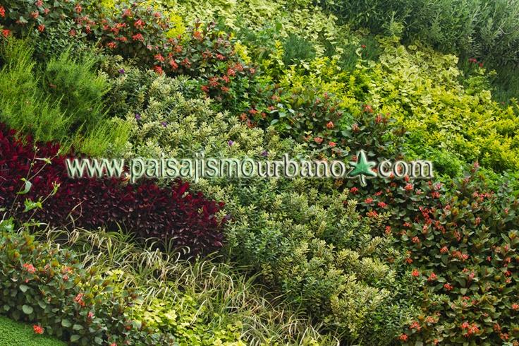 Mejores 16 im genes de jardin vertical centro comercial for Jardines verticales ecuador