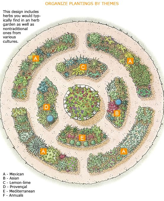 This design includes herbs you would typically find in an herb garden as well as nontraditional ones from various cultures.