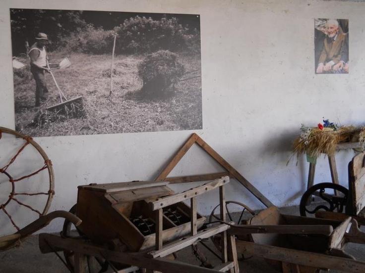 Nuovo allestimento   www.museialtovicentino.it