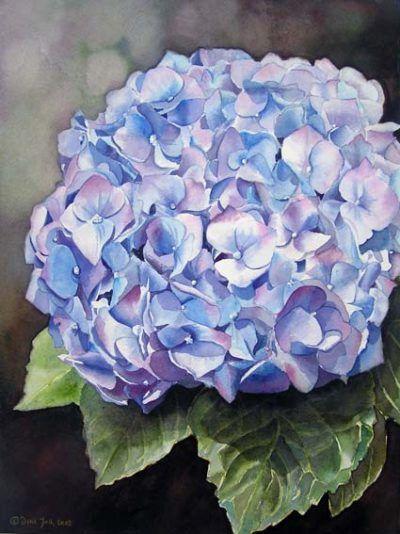 Blue Hydrangea - Flower watercolor painting by Doris Joa - Original Aquarellgemälde, blaue Hortensie