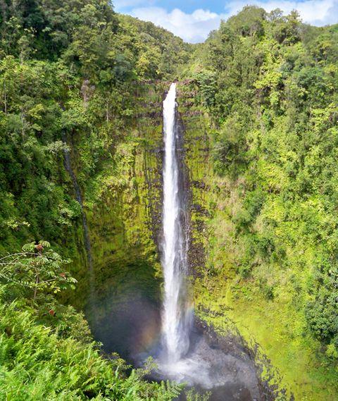 テックスのマラサダ、ワイピオ渓谷、アカカ滝、ロコモコ発祥のカフェ100、キラウエア公園、黒砂公園など、ハワイ島の必見スポットを巡るツアーで「ハワイ島上級者」になりませんか?