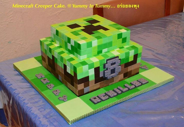 Minecraft Creeper Cake.