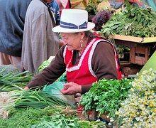 Куэнка, Эквадор, Рынок, Крестьянин
