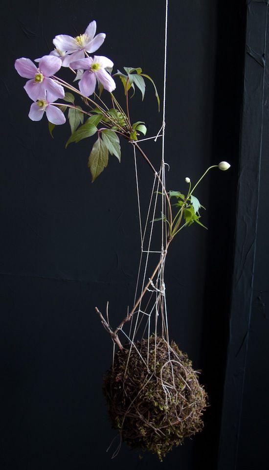 Fedor van der Valk, the designer of String Garden via April and May