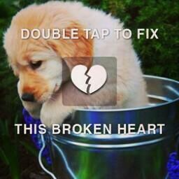 Image result for double tap to fix this broken heart pics