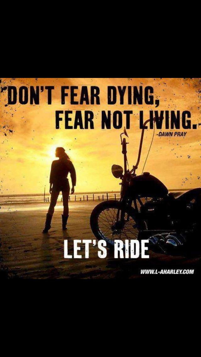 Yes Rain Or Shine Warm Or Cold Let S Ride Biker Quotes