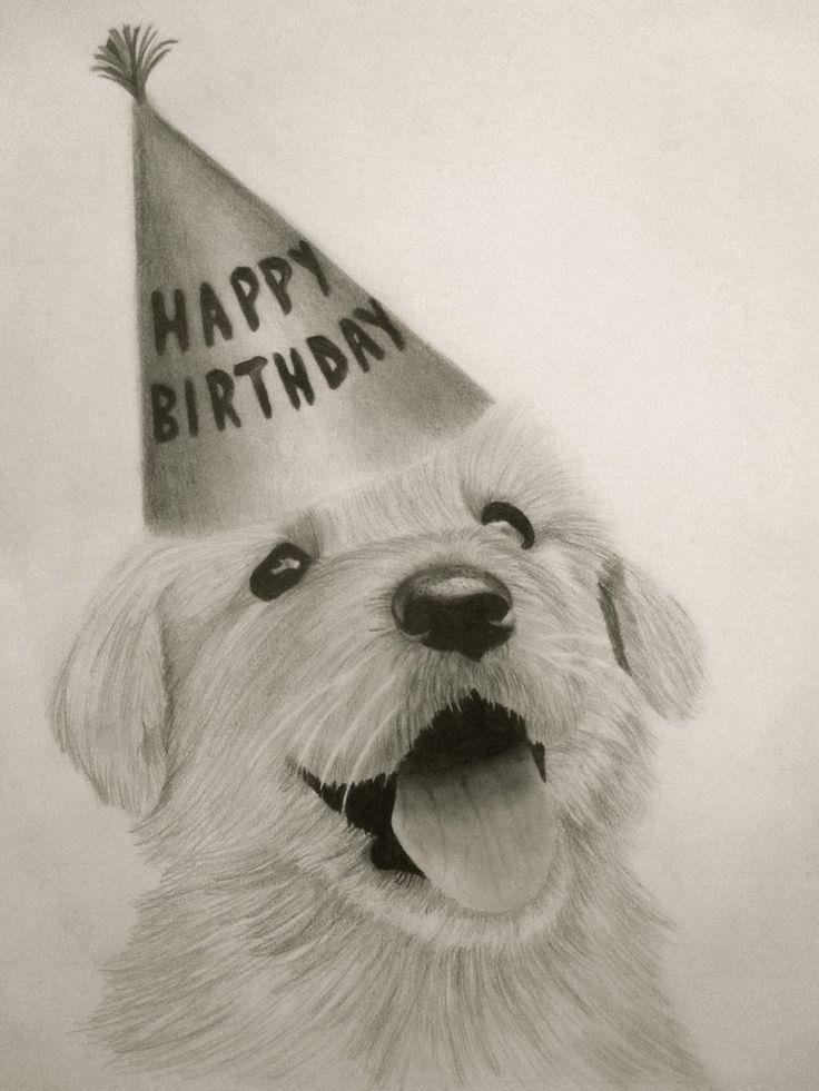 Birthday Puppy!!