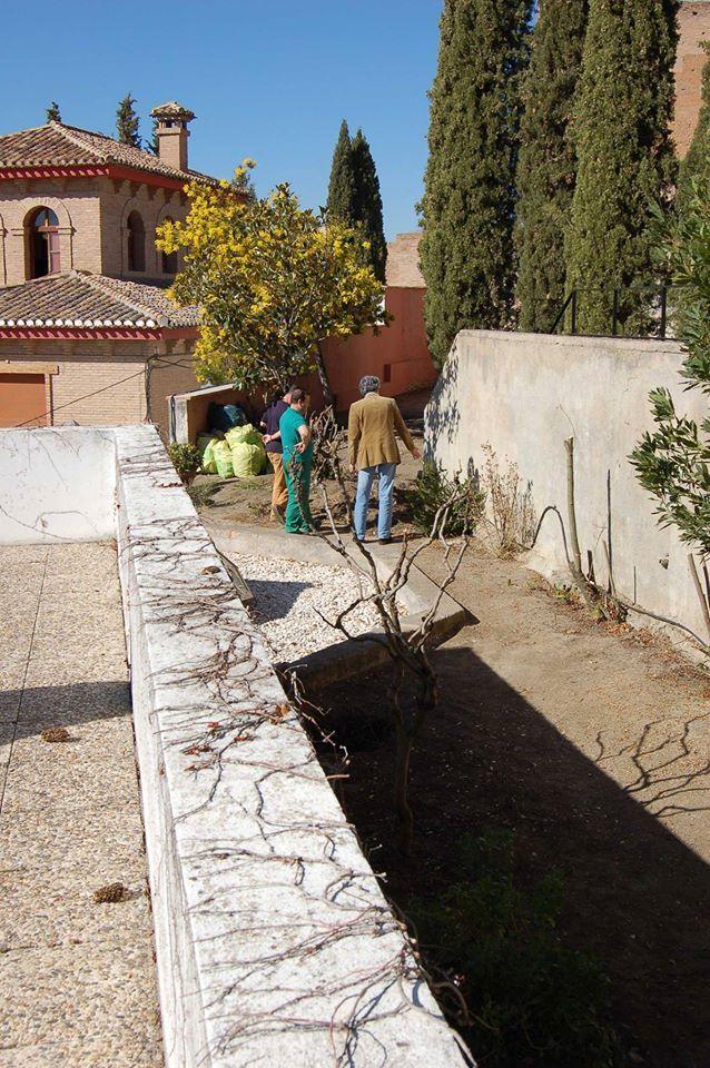 Empezamos la semana con unas imágenes de hace unos días, con el inicio de los arreglos del jardincillo del Instituto #GómezMoreno.