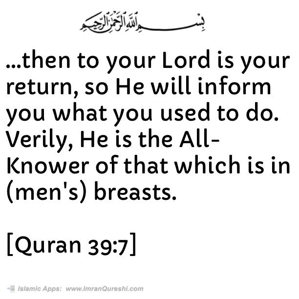 * In the name of #Allah, the Most Gracious, the Most Merciful   Then to your Lord is your return, so He will inform you what you used to do. Verily, He is the All-Knower of that which is in (men's) breasts.   [#Quran 39:7]    .   Islamic Mobile Apps: http://ImranQureshi.com/app_category/islamic-mobile-apps/  #islam #muslim #muslimah