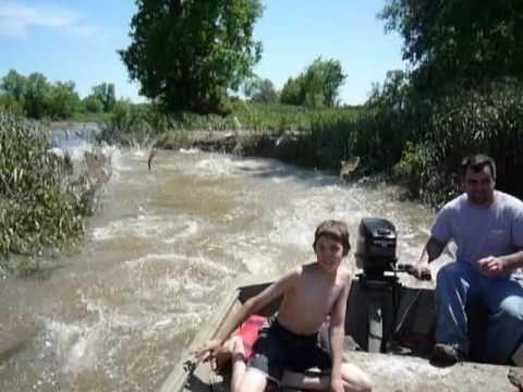 Maklike manier om vis te vang