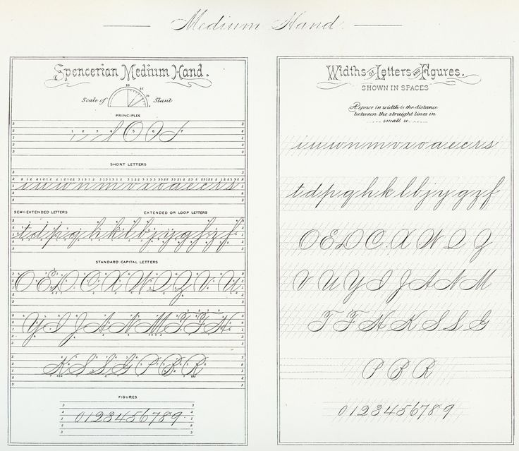 https://flic.kr/p/JxC7D7 | Spencerian Medium Hand 1200 DPI