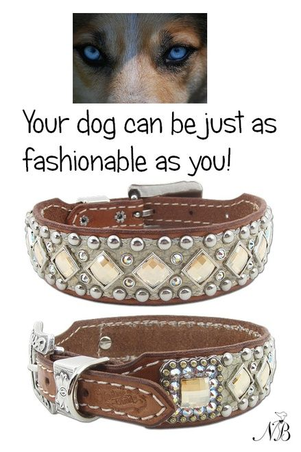 Stunning southwestern distressed cream dog collar beautifully-made with genuine…