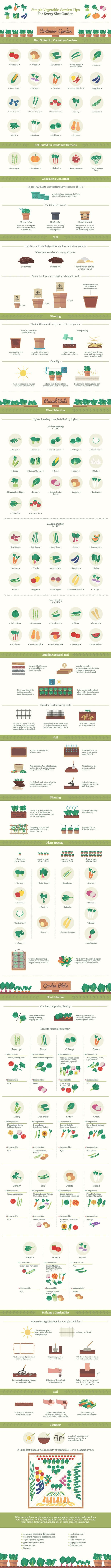 An Extensive Guide to Growing Vegetables   Mental Floss