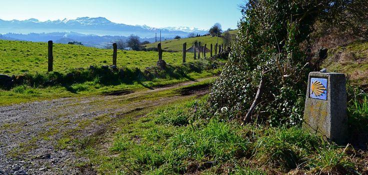 Alto de la Campa. Camino de Santiago en Asturias