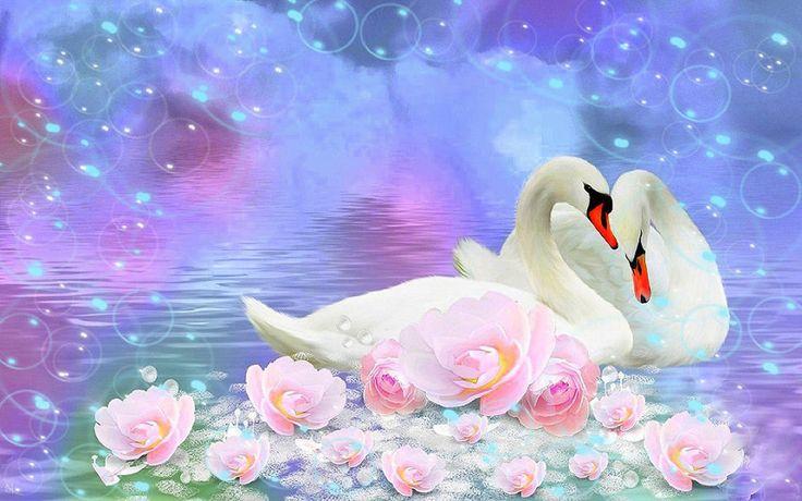 Днем, лебеди на свадебных открытках